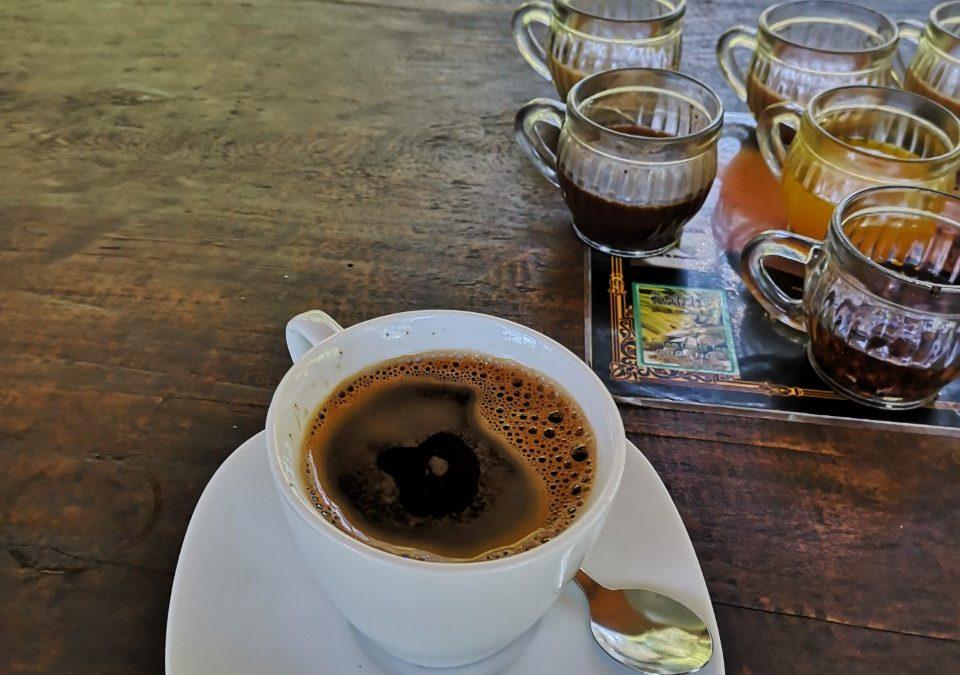 Kopi Luwak, El café mas caro del mundo!!!